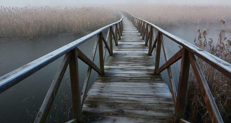 fog-1957493_960_720
